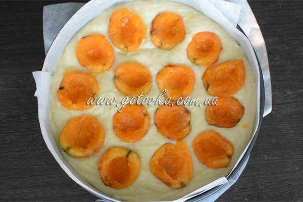 pirog-iz-abrikos-bisrto-visosckaya (6)